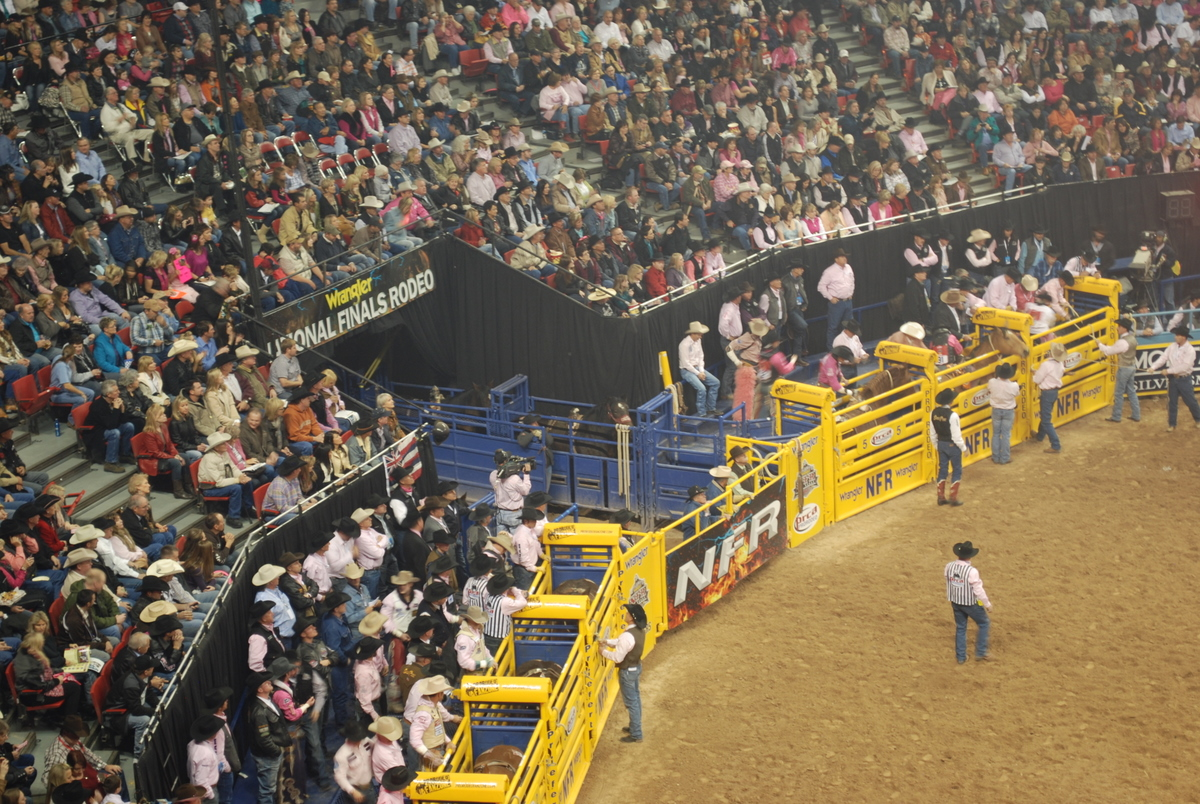 Wrangler Nfr The Icing On The Cake Nfr Insider