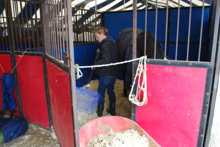 Wrangler NFR barrel racer Trula Churchill had the glamorous job of cleaning out the stall of her horse, Worm, as he enjoyed breakfast Friday morning.