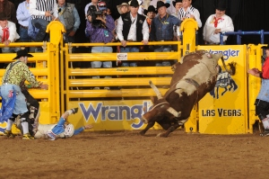 Kanin Asay suffered a rib contusion in Round 2, but it didn't keep him from competing Saturday night.  (PRCA ProRodeo photo by Larry Smith)