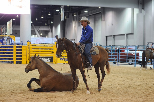 Horsemanship demonstrations and the inaugural Exclusive Genetics Million Dollar Bucking Bull and Rider Tournament will be just two of the multitude of events held at the Wrangler Rodeo Arena at Cowboy FanFest this year.
