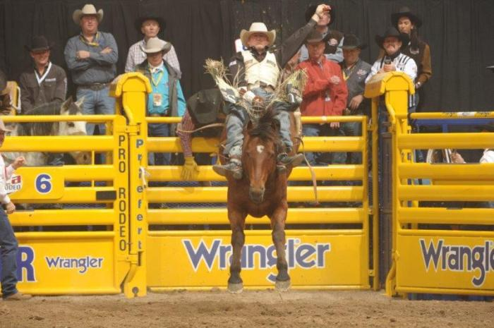 Steven Peebles won Round 3 with this 85.5-point ride on Andrews Rodeo's Cool Water and leads all bareback riders in earnings through three rounds.  --PRCA ProRodeo photo by Mike Copeman