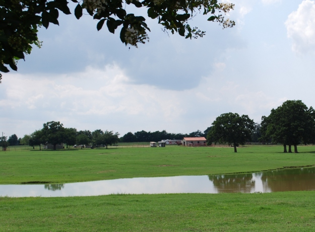 One can certainly enjoy the beauty of a Texas ranch while visiting Pete Carr's property.