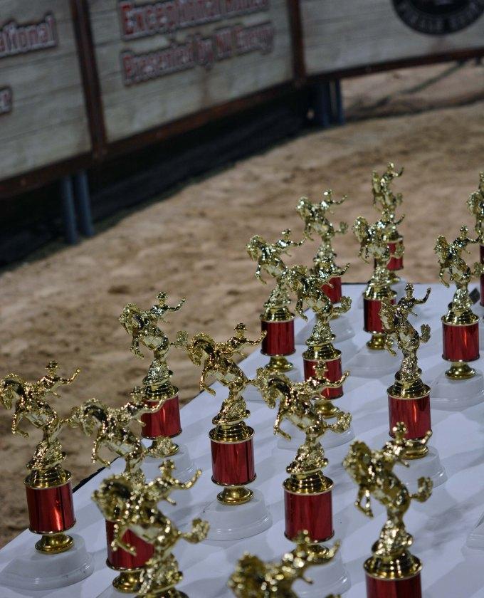 er trophies