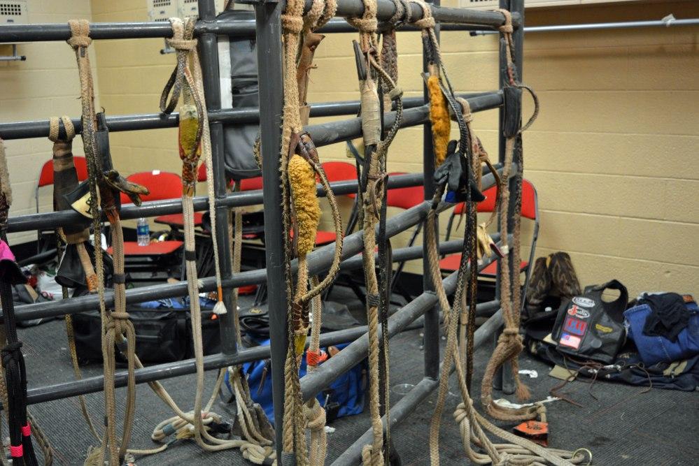bull-ropes