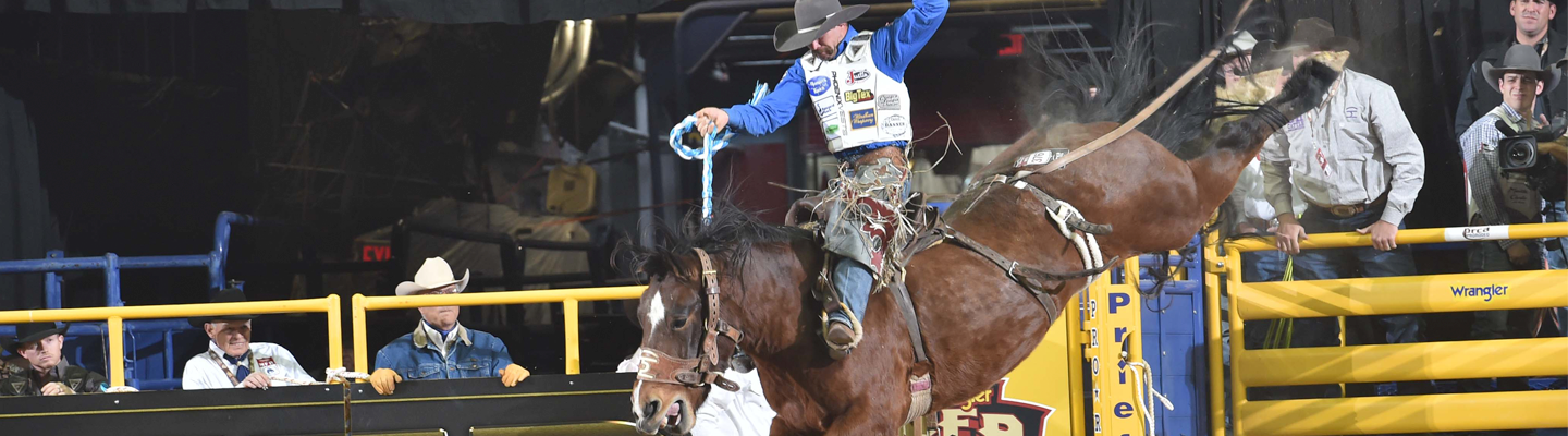Heith WNFR –PRCA photo by Dan Hubbell