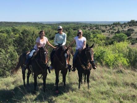Tillar Trail riding